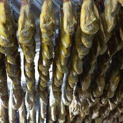 Curado y maduración jamón ibérico de bellota jamivi de villanueva de Córdoba jamondecordoba.es