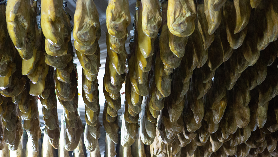 secadero jamon iberico de bellota montanera jamivi jamon iberico de bellota de villanueva de cordoba
